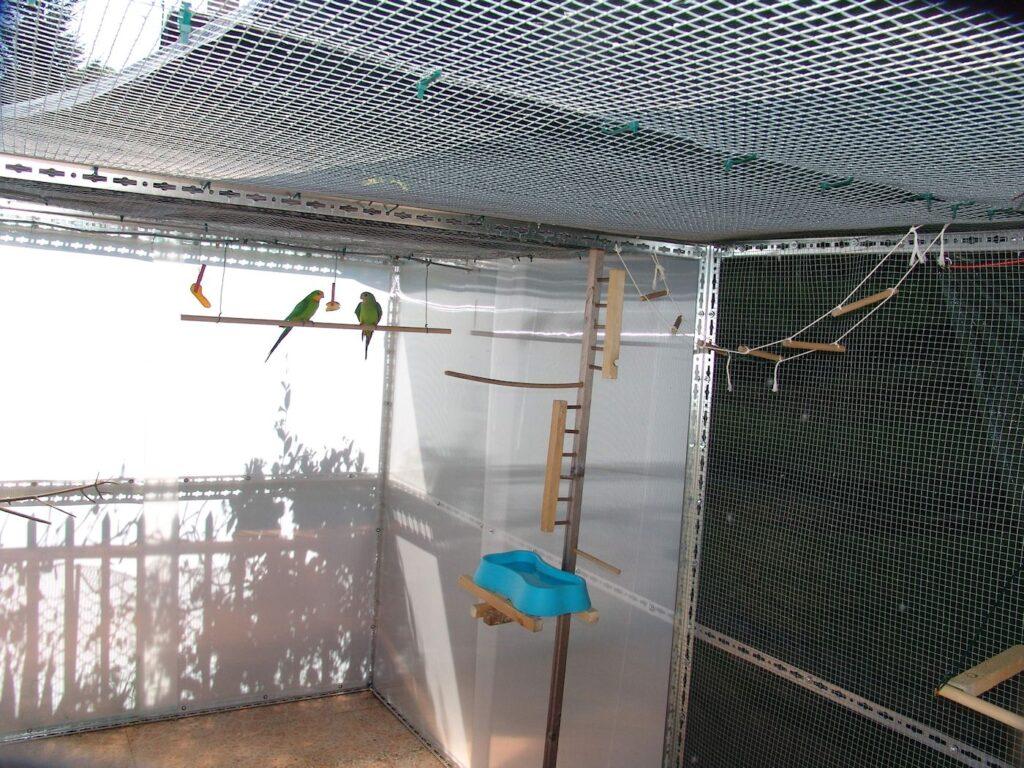 Voliera per pappagalli con pareti in policarbonato e rete metallica